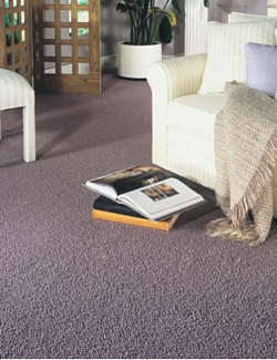 Maple-Ridge-Carpet-One-Maple-Ridge-BC-Carpet-Fiber