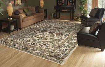 marshall-carpet-one-mayfield-heights-oh-area-rugs-dalyn