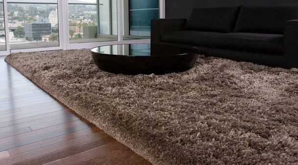 marshall-carpet-one-mayfield-heights-oh-area-rugs-momeni
