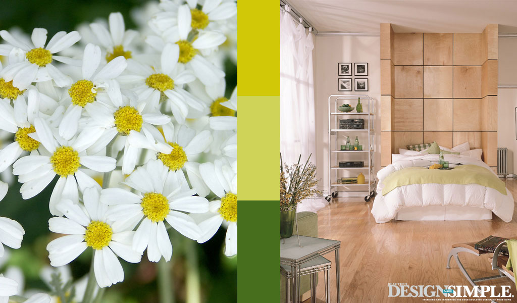 daisy inspired home decor