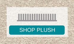 shop plush carpet