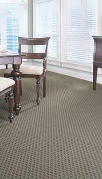 STAINMASTER carpet Nashville, TN